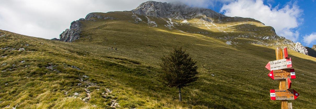 alpi_apuane_apuan_alps_treking