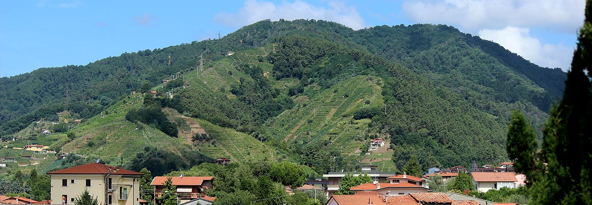 borgodelponte_massa_carrara_vista_colline_candia_colli_apuani